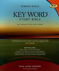 Hebrew-Greek Key Word Study Bible-0