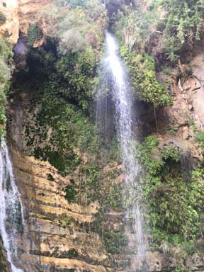 One of the waterfalls of Ein Gedi